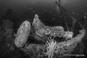 Best Dive Sites in the Solomon Islands - WW2 Wreck