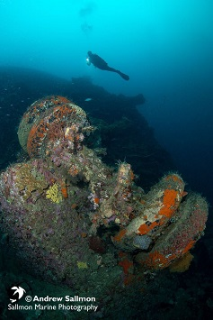 Best Dive Sites in the Solomon Islands - White Beach